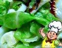 素炒圆白菜的做法